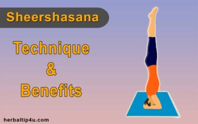 Sheershasana: Headstand Pose, Techniques and Benefits