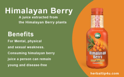 IMC Himalayan Berry Juice: Uses, Dosage, Side Effect and Precaution