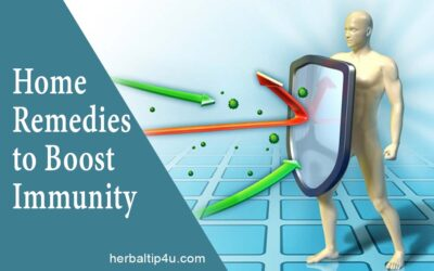 Home Remedies to boost Immune System Naturally